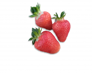 Erdbeeren 2 freigestellt inkl shatten_ohne Rand