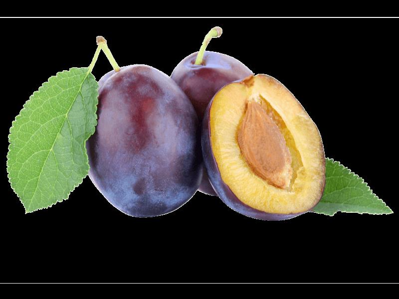 Obsthof-Streicher-Zwetschgen