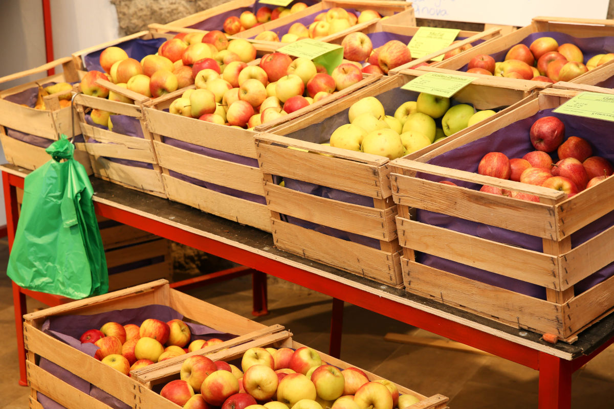 Äpfel vom Bodensee