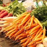 Karotten von der Höri