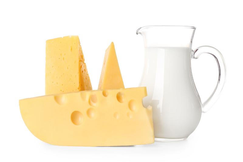 Milch_Käse_Produkte
